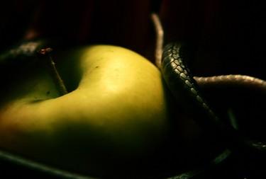 apple-serpent