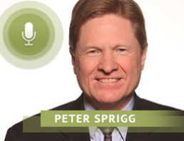Peter Sprigg discusses the transgender movement