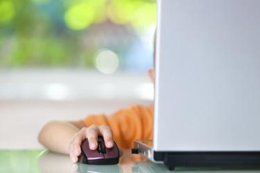 small boy on laptop - porn